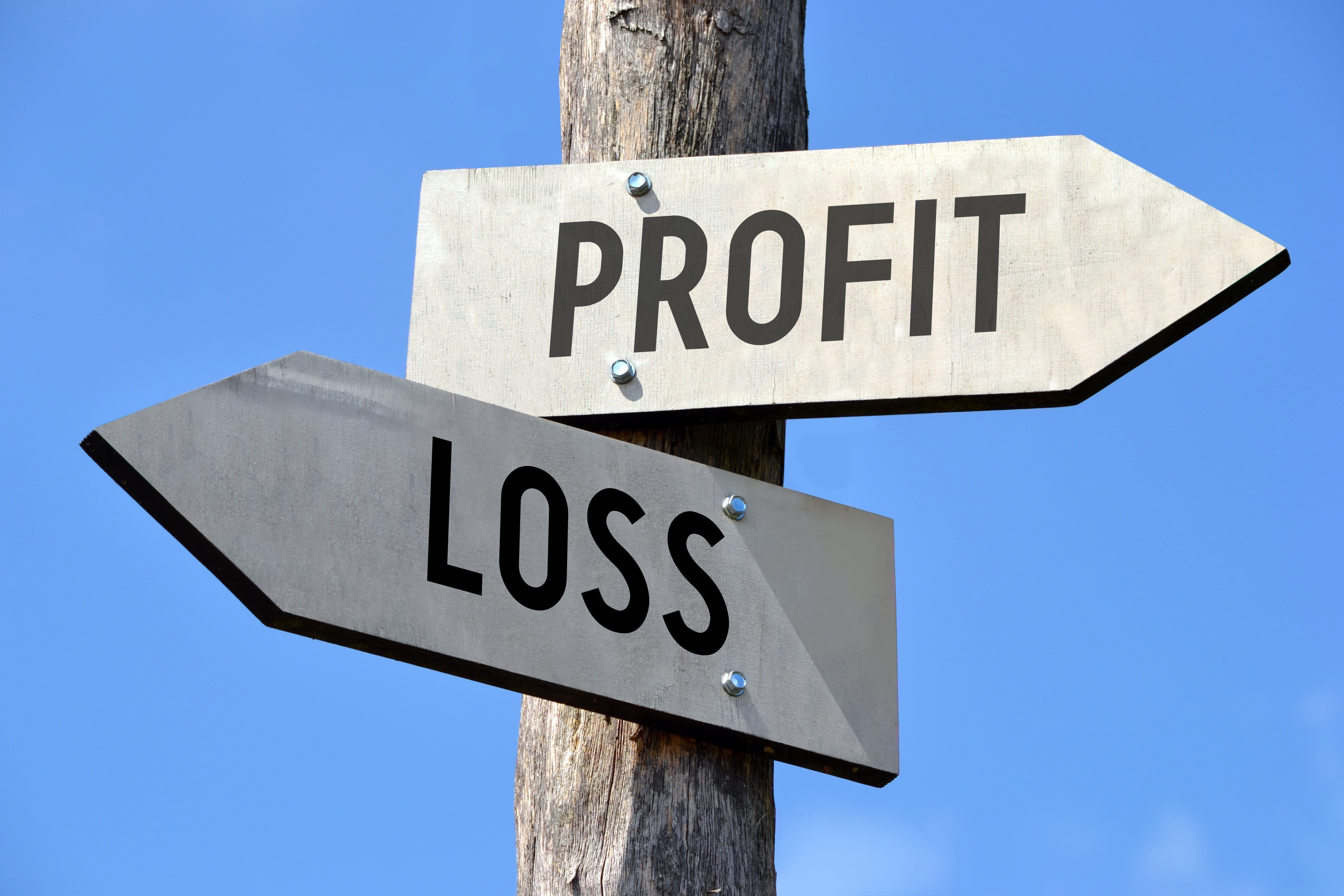 Guide to Understanding Your Profit & Loss Statement